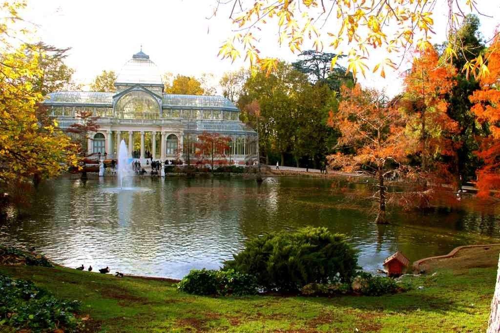 Palacio de Cristal en el Parque de El Retiro de Madrid (Fuente: www.colegiojoaquincosta.com)