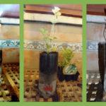 Cómo fabricar Macetas con Autorriego recicladas