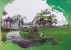 Qixin Ecological Garden en Tianjin: agroecología en China