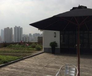 Anken Rooftop Farm: Agricultura urbana en Shanghai
