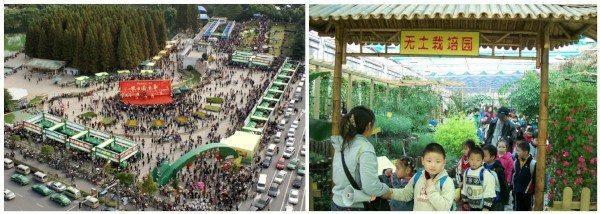Naturación Urbana en China: Agro-carnival en Nanjing y Sunqiao Hi-tech Agro- Park en Shanghai