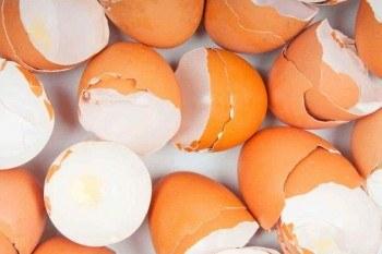 Con machacar y añadir al suelo una cáscara de huevo conseguiremos que aumente su contenido en calcio.