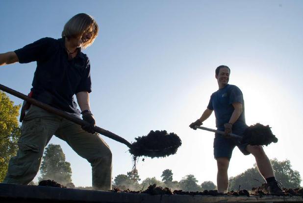 Personal de Kew Gardens trabajando en Compost Heap Fuente: (www.kew.org)