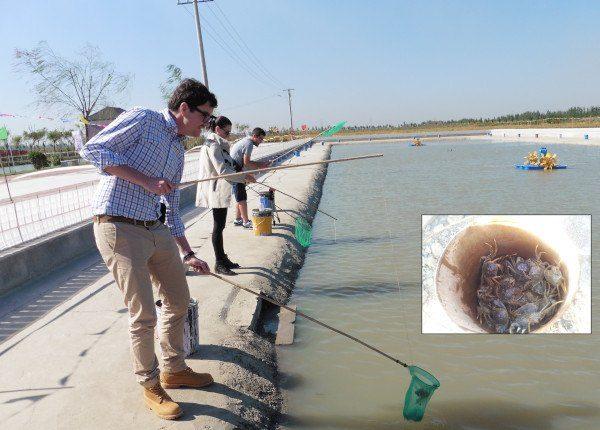 Pesca de cangrejos en Qixin Ecological Garden
