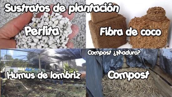 Aquí vemos varios tipos de sustratos de plantación. Muy buenos, pero no muy fáciles de encontrar.