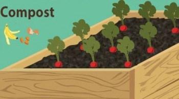 Mulching o acolchado  con compost