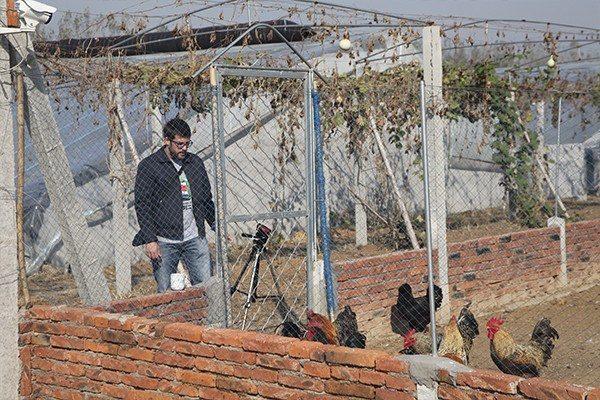 Granja con gallinas ecológicas en China