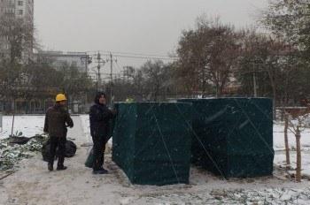 Protección de frutales en invierno: Huerto urbano en Pekín