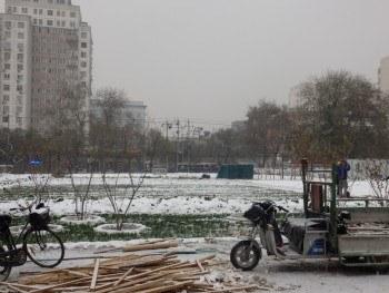 Pekin: Agricultura urbana en China  en invierno