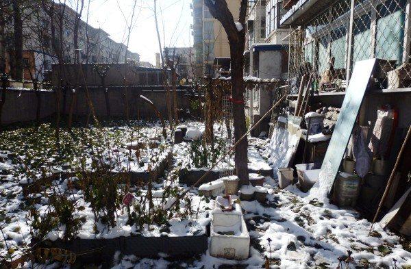 Sanyuanli Community Garden. Un huerto comunitario en Pekín