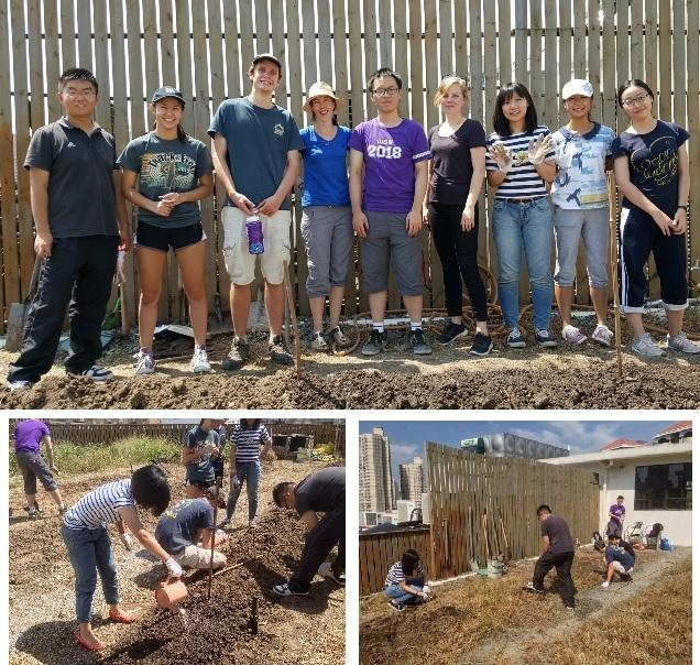 """Voluntarios en el huerto """"Anken RoofSkyfarm"""""""