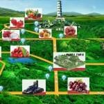 Central Cultural Leisure Park. Agricultura de ocio en Pekín