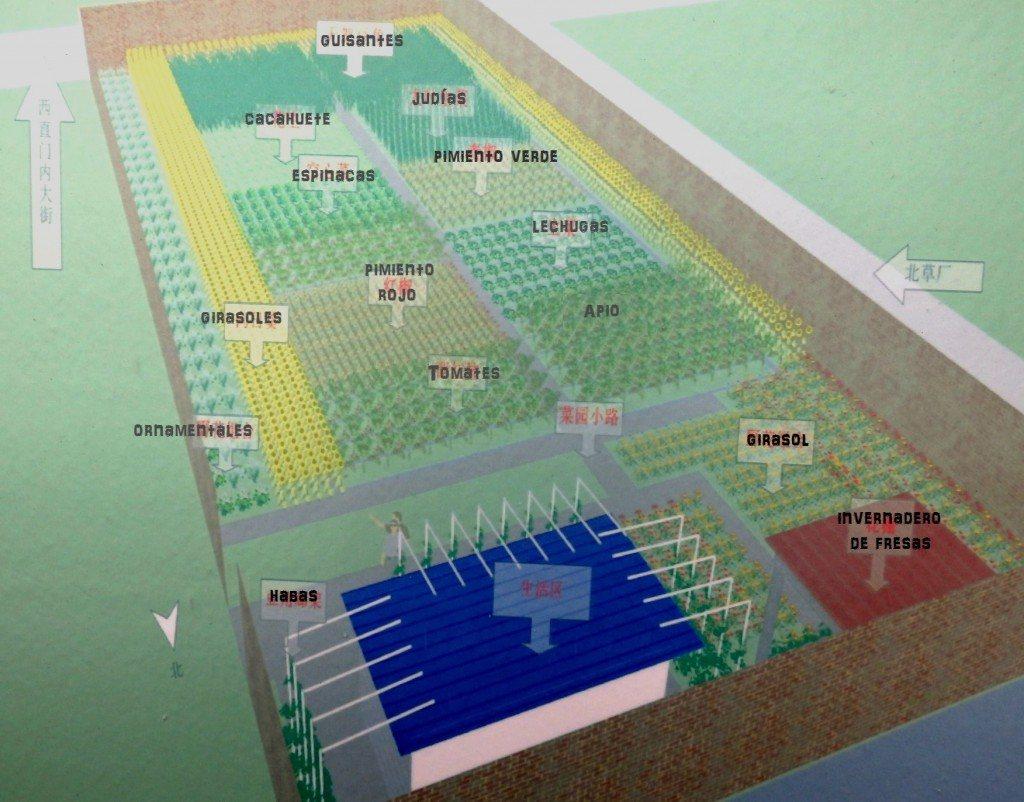 Plano de huerto urbano en Pekín
