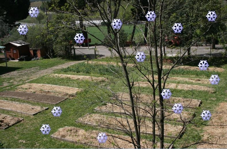 Invierno 7 cosas para hacer en el huerto for Preparar el huerto en invierno