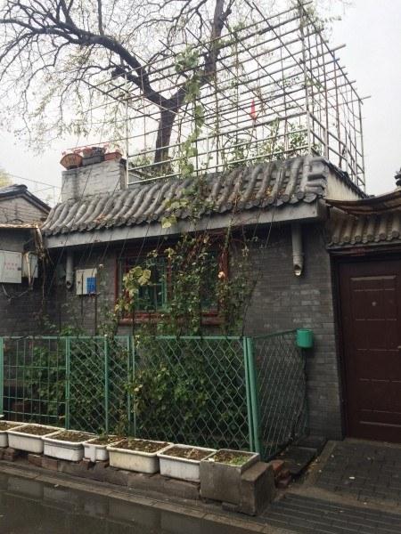 Agricultura urbana China: microhuerto domésticoen Huton