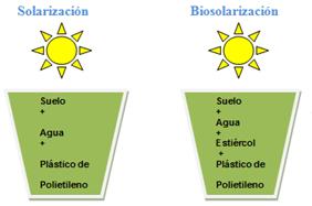 Solarización y Biosolarización