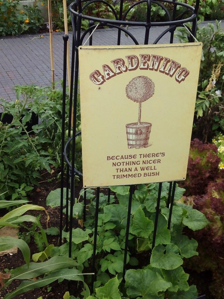 Jardinería: No hay nada mas bello que un arbusto bien recortado