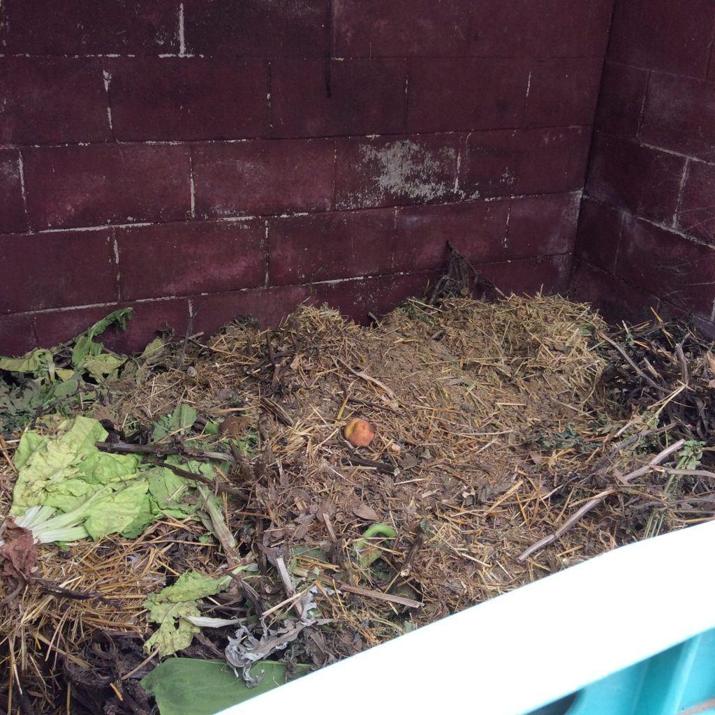 Compostera Can Cadena