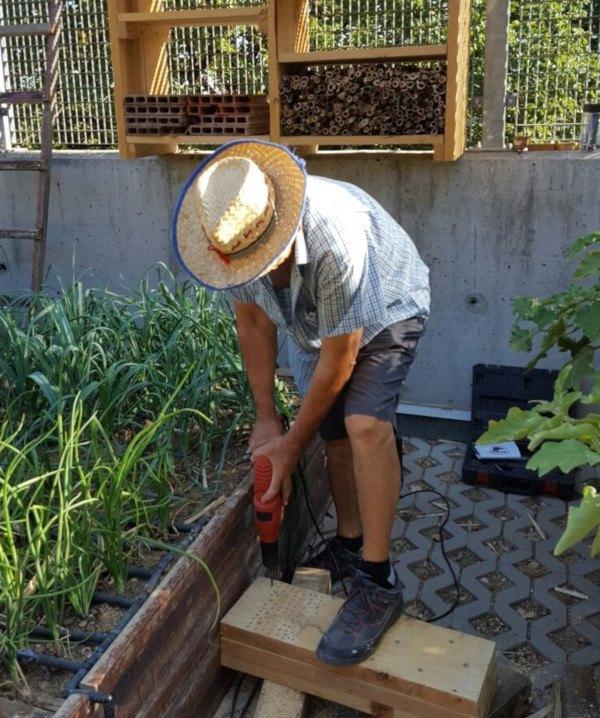 Bloques de madera donde criar insectos beneficiosos