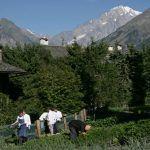 5 Hoteles con huerto en Europa – De la huerta a la mesa de los huéspedes