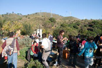 huertos en Barcelona: huertos comunitarios