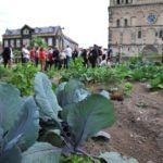 Agricultura Urbana en Alemania. Huertos urbanos en Andernach, huertos en Berlín…