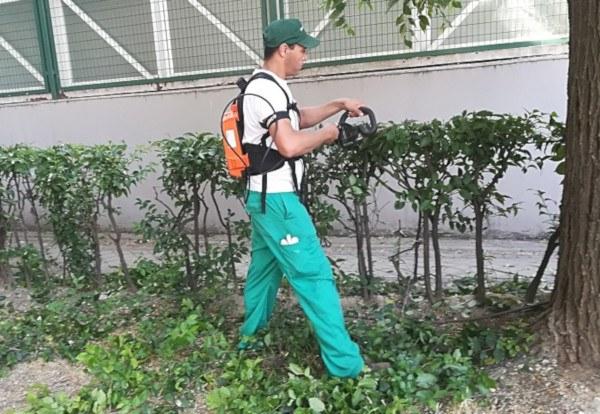 Herramientas eléctricas para el jardín