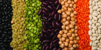 tipos leguminosas
