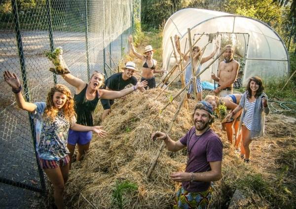 voluntariado en huertos y granjas ecológicas