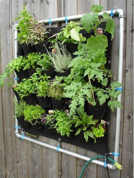 C mo cultivar huertos verticales estructura sustrato for Riego jardin vertical