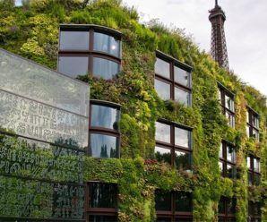 Jardín vertical del Museo Quai Branly de Jean Nouvel, Paris 200
