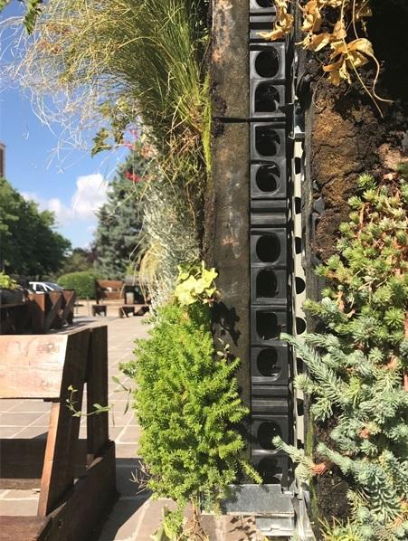 Instalación de sistema de jardín vertical modular con sustrato. Imagen: itdUPM