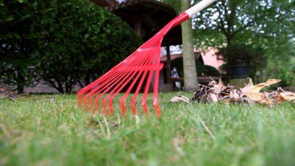 herramientas de jardinería: escoba para césped