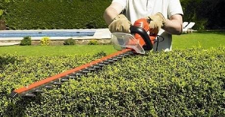 maquinaria de jardinería cortasetos