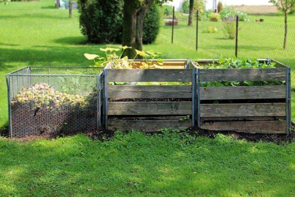 técnicas de cultivo: hacer composta casera